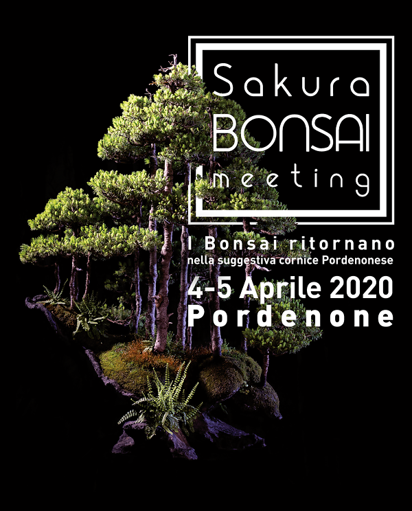 Locandina Sakura Bonsai Meeting 2020